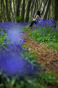 Woman Picking Wildflowersの写真素材 [FYI03633814]