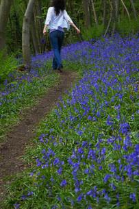 Woman Walking on a Pathの写真素材 [FYI03633818]