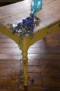 Fallen vase with flowers on tableの写真素材 [FYI03634010]