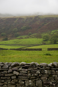 Fields in Yorkshire Dalesの写真素材 [FYI03634084]