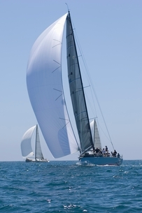 Yachts compete in team sailing eventの写真素材 [FYI03635036]