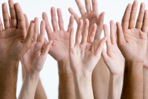 Young men and women raising hands  close-up of handsの写真素材 [FYI03635261]