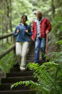 Middle-aged woman and senior man on trail in forest  focusの写真素材 [FYI03635534]