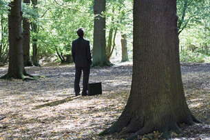 Business man standing with briefcase in middle of forestの写真素材 [FYI03635644]