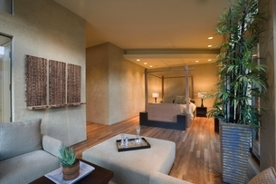 Spacious living room interior with bamboo houseplantの写真素材 [FYI03635992]