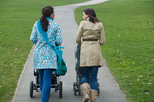 Back view of two mothers pushing strollers in parkの写真素材 [FYI03636367]