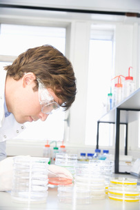 Scientist working in chemistry laboratoryの写真素材 [FYI03636882]
