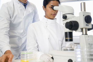 Scientists using microscope in laboratoryの写真素材 [FYI03636891]