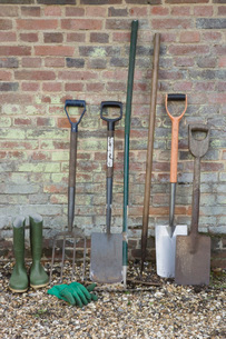 Shovels and Gardening Toolsの写真素材 [FYI03637118]