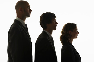 Businesspeople standing in row  in height order  profileの写真素材 [FYI03637399]