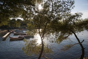A lake surrounded with trees and a few boats by the jettyの写真素材 [FYI03637891]