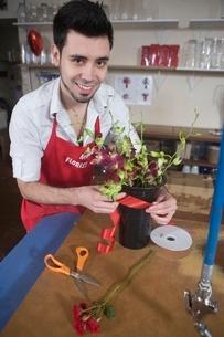 Florist gift wraps houseplantの写真素材 [FYI03637932]