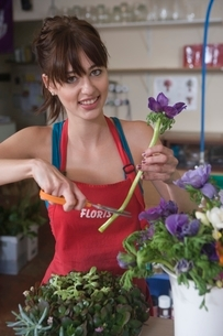 Florist cuts stem of flower for arrangementの写真素材 [FYI03637947]