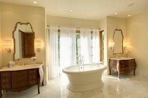 Bathroom interiorの写真素材 [FYI03638015]