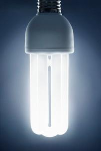 Energy saving lightbulb studio shotの写真素材 [FYI03638416]