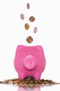 Coins pouring into overflowing piggy bankの写真素材 [FYI03638612]