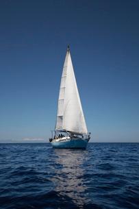 Sailboat on oceanの写真素材 [FYI03638898]