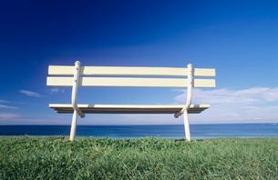 Seat overlooking ocean Victorian coastline Australiaの写真素材 [FYI03639006]