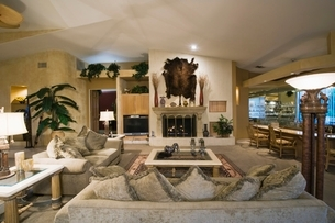 palm Springs living room with wall-mounted animal peltの写真素材 [FYI03639845]