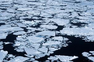 Antarctica Weddell Sea ice floeの写真素材 [FYI03640076]