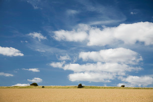 Field and sky with cloudsの写真素材 [FYI03640457]