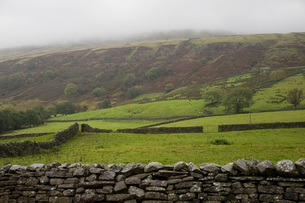 Fields in Yorkshire Dales Yorkshire Englandの写真素材 [FYI03640584]