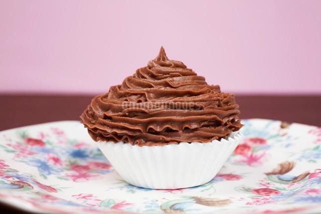 Chocolate cupcake on plateの写真素材 [FYI03641395]