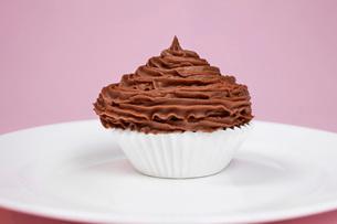 Chocolate cupcake on plateの写真素材 [FYI03641402]