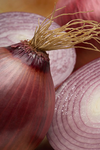Red onion close-upの写真素材 [FYI03641452]