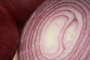 Cross section of red onion close-upの写真素材 [FYI03641453]