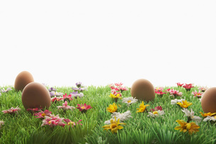 Easter eggs on artificial meadowの写真素材 [FYI03641504]