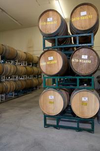 Wine barrelsの写真素材 [FYI03641614]