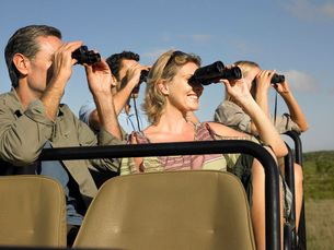 Group of tourists on safari sitting in jeep looking throughの写真素材 [FYI03642091]