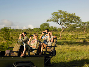 Group of tourists on safari sitting in jeep looking throughの写真素材 [FYI03642092]