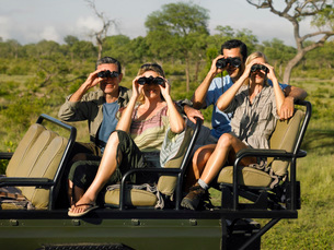 Group of tourists on safari sitting in jeep looking throughの写真素材 [FYI03642093]