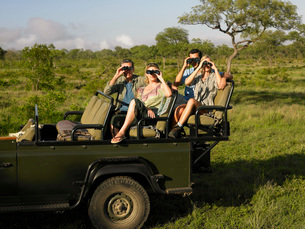 Group of tourists on safari sitting in jeep looking throughの写真素材 [FYI03642094]