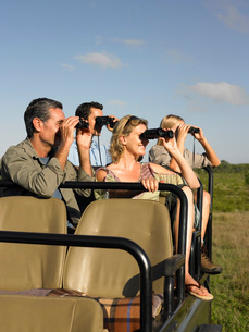Group of tourists on safari sitting in jeep looking throughの写真素材 [FYI03642096]