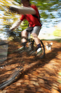 Dog chasing person on mountain bike through woodland motionの写真素材 [FYI03642556]