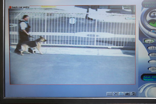 Guard with dog seen on picture from security cameraの写真素材 [FYI03642616]