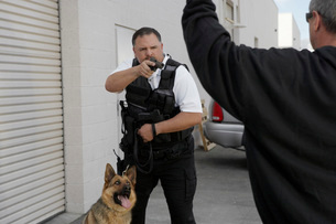 Thief with raised arms and security guard with dogの写真素材 [FYI03642626]