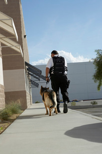 Security guard with dog on patrolの写真素材 [FYI03642637]