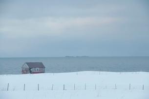 Remote house in coastal landscape Flakstad Flakstadoya  Loftの写真素材 [FYI03643422]