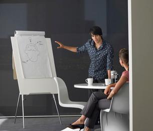 Business man giving presentation on flipchartの写真素材 [FYI03643734]