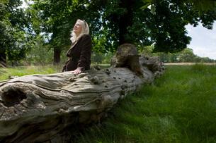 Woman Sitting on a Dead Treeの写真素材 [FYI03645712]