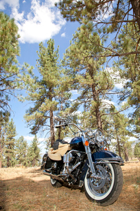Motorcycle with riding gloves and jacket in forest settingの写真素材 [FYI03646509]