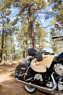 Motorcycle with riding gloves and jacket in forest settingの写真素材 [FYI03646510]