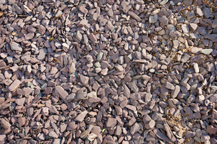 Close-up view of mixed gravel and slate stonesの写真素材 [FYI03646718]