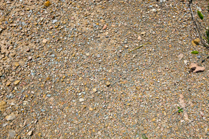 Small stones, gravel, and red dirtの写真素材 [FYI03646842]