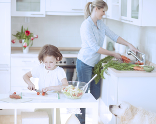 Mother and Daughter (8-9) preparing healthy meal in kitchenの写真素材 [FYI03647044]