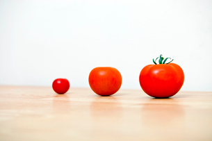 Studio Shot of three cherry tomatoes in a rowの写真素材 [FYI03647087]